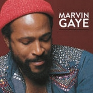 Gaye Marvin Collected Disco Vinile In Vendita Online